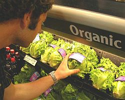 "What does it mean when food is labeled ""organic"" and is it actually better for you?"